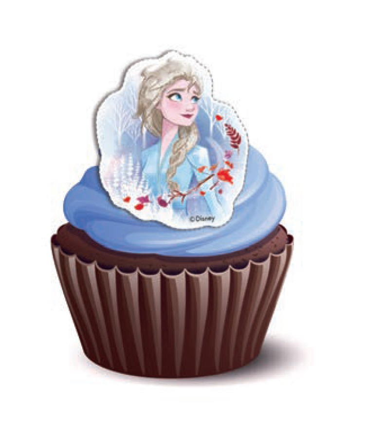 Frozen Theme Cupcakes Pack of 6
